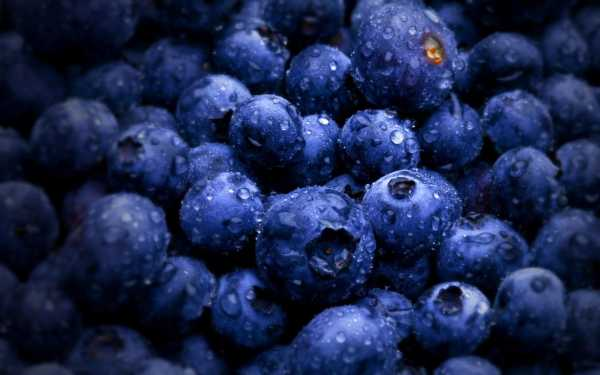 Blueberry e-liquid Vape
