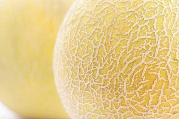 Big Melons e-liquid Vape e-Juice