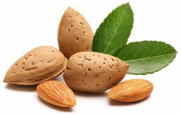 Almond e-Liquid