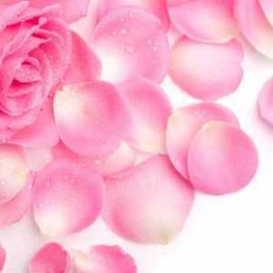 Rose Petal e-liquid